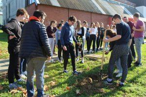 zajednicke-akcije-sadnje-stabala-krizevci
